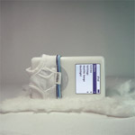 Slip per iPod
